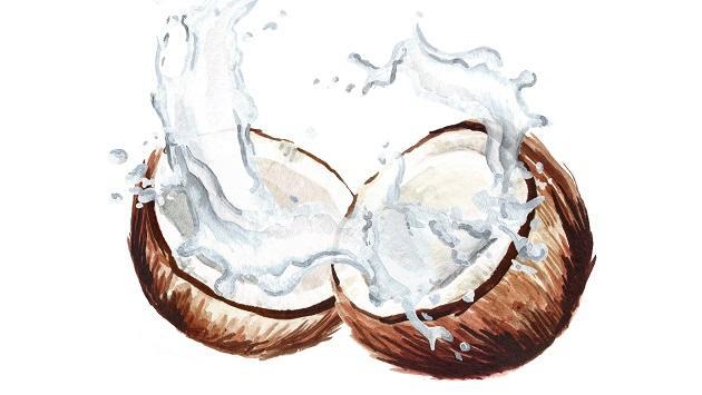 Conoce los beneficios de consumir agua de coco