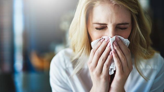 Conoce los remedios herbales que te ayudarán a combatir la rinitis alérgica
