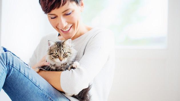 Conoce por qué tener gatos en casa es bueno para la salud