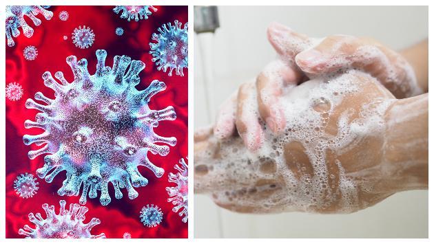 Coronavirus: ¿qué le hace el jabón al virus al lavarnos las manos?