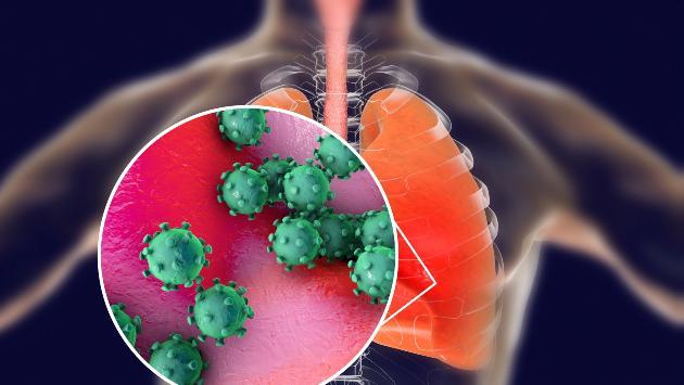 Coronavirus: 3 datos que debes saber del virus que ya llegó a América