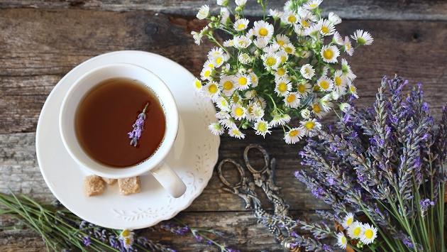 Hierbas medicinales que ayudan a depurar el colon