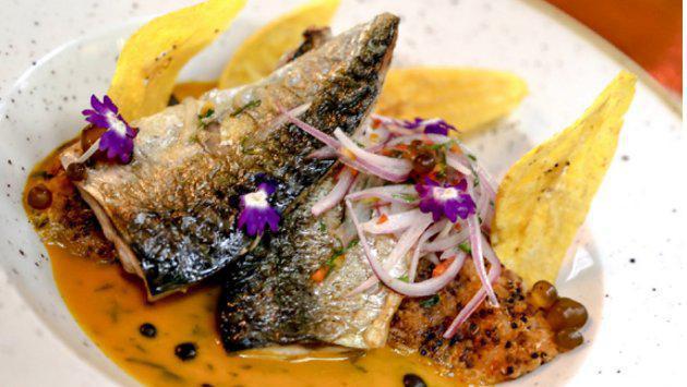 Pescado: un aliado nutricional del Perú