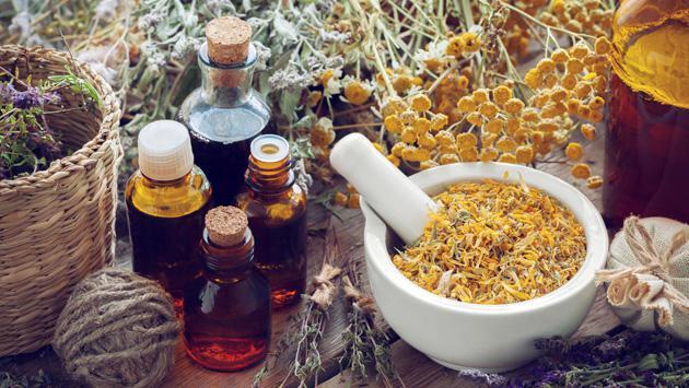 Plantas medicinales que fortalecen y cuidan los huesos