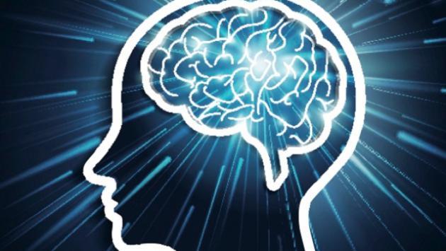 Productos naturales que fortalecen el cerebro