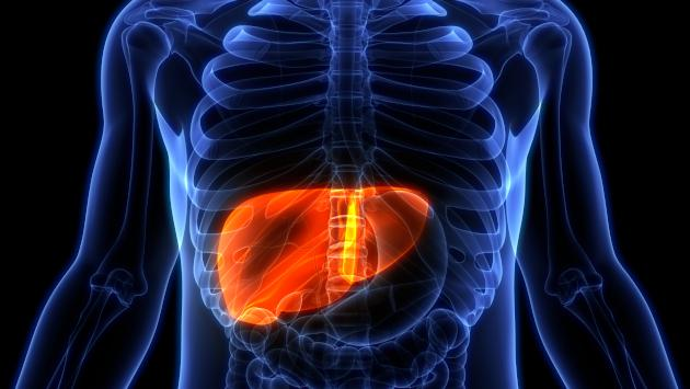 Todo lo que debes saber sobre la hepatitis